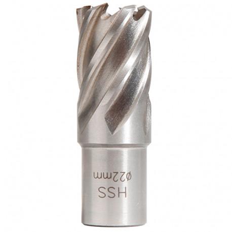 Fraise HSS Weldon 19 mm hauteur 25 mm D. 22 mm - 20598210 - Sidamo