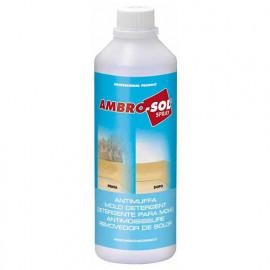 Anti-moisissure 500 ml - P314 - Ambro-sol