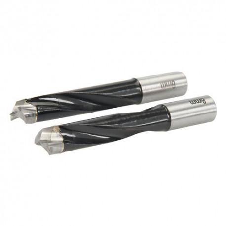 2 fôrets D. 8 mm pour chevilleuse tourillonneuse TRITON TDJ600 - 109467 - Triton