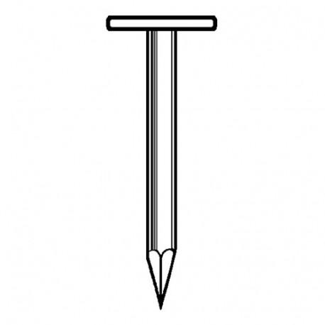Pointe en vrac tête extra large (TEL) lisse galvanisée à chaud (HDG) 2,8 x 40 mm 5 kg - Fixtout