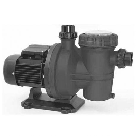 Pompe de piscine auto-amorçante avec préfiltre incorporé 230 V 0,75 CV débit 13m3/h - 48389C