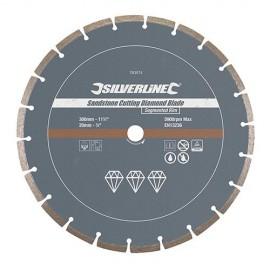 """Disque diamant segmenté """"PRO"""" D. 300 x 20 x 7 mm pour le grès cérame - 763574 - Silverline"""