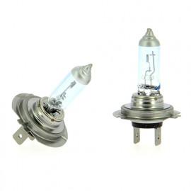 2 Ampoules Platinium white + 100 % - H7 - 12 V - 55W - 3 400 K - 450h - Feux de croisement - Route - Antibrouillard - WRC