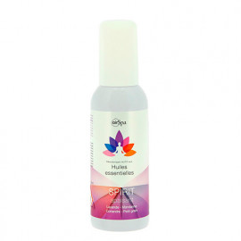Désodorisant spray à base d'huiles essentielles - Spirit - 50 ml - Air Spa