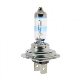Ampoule X-Trem Vision H7 - 12 V - PX26d - 5W - Feux de route - Feux de croisement - Feux antibrouillard - Philips