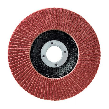 10 disques à lamelles corindon D.125 x 22,23 mm Gr 80 A Plat Lamdisc support fibre - 11001039