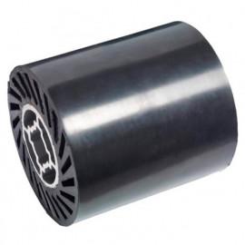 Rouleau caoutchouc à expansion D. 90 x 100 x Al. 19 mm pour satineuse SM100 - SM100EW-GUMMIERT - Holzmann