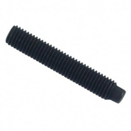 Vis sans tête 6 pans creux à bout téton STHC 12 x 25 mm Brut - Boite de 100 pcs - DIAMWOOD HCTE1202501B