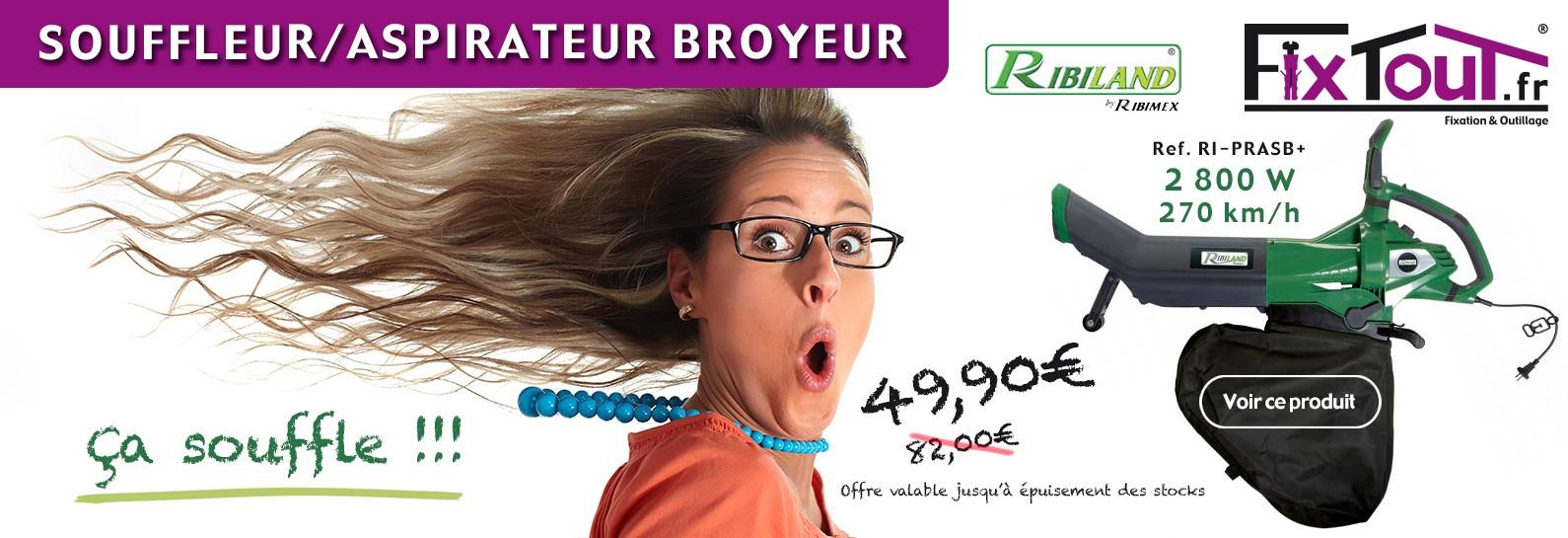 Souffleur / Aspirateur broyeur
